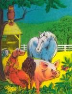 Personalized Books My Farm Adventure